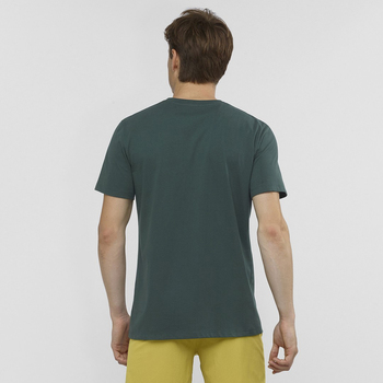 Salomon Cotton Logo SS Tee M Erkek T-Shirt LC1320200